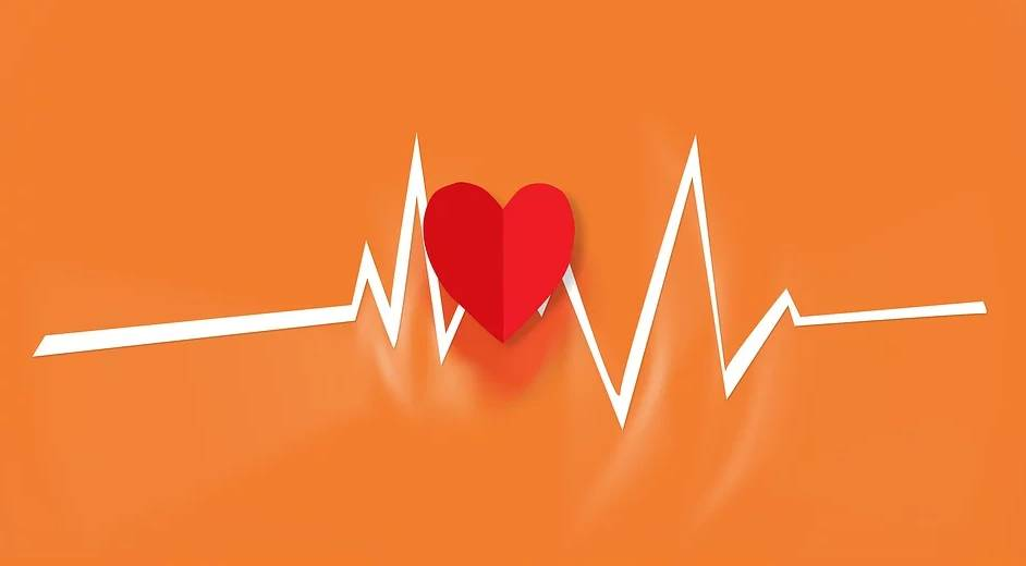 rythme cardiaque et dépense calorique