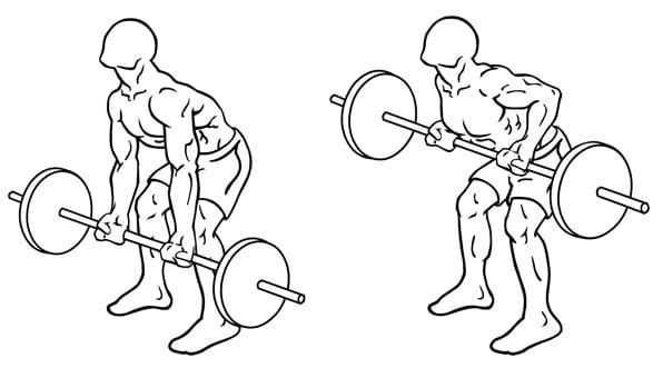 Rowing-barre-exercice-dos