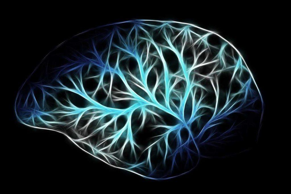 noradrénaline hormone stress sport cerveau