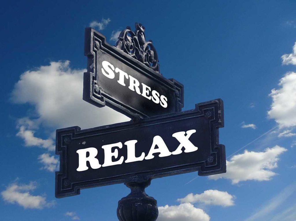 noradrénaline hormone stress sport